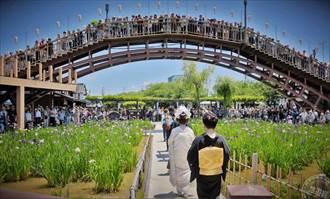 日本茨城 西富士、東筑波山珍喜迎春