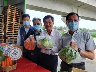 克服保鮮難題  雲林蔬菜外銷到25天航程外的馬紹爾群島