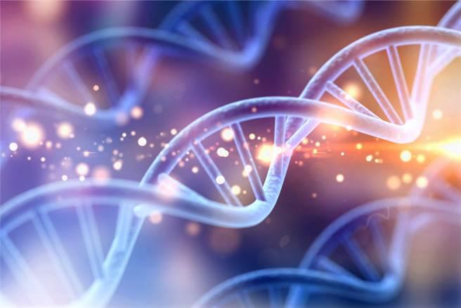見證DNA 科技進步的冷案。(示意圖/達志影像shutterstock提供)