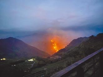 今年第6起 大阿里山再傳大火