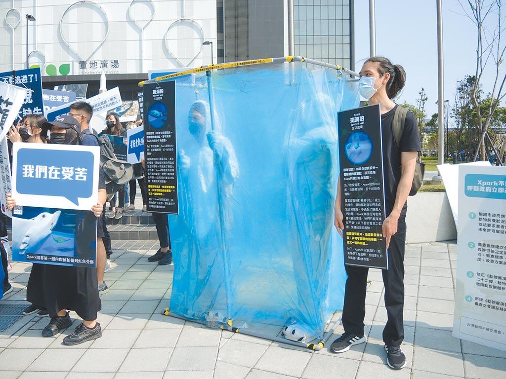 兩名動保團體志工扮演海豹,試圖呈現Xpark館內動物的心情。(邱立雅攝)