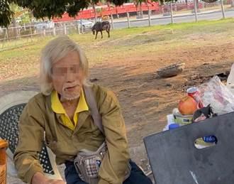 馬路不是給馬走的 高雄男騎機車遛馬吃罰單 動保處也要查