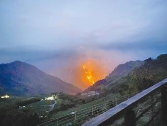 阿里山火警頻傳 人為因素難防