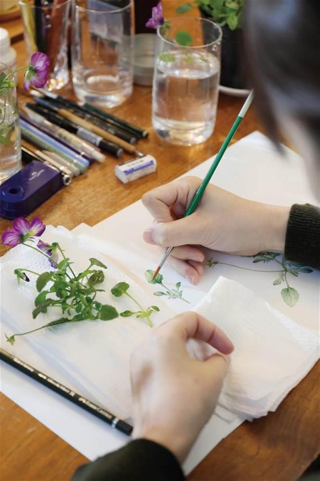 圖鑑式繪畫講究細節,葉脈、花序、花蕊……一筆筆勾勒在紙上,美麗的作品背後,是磨練心性的考驗。(圖/林格立提供)