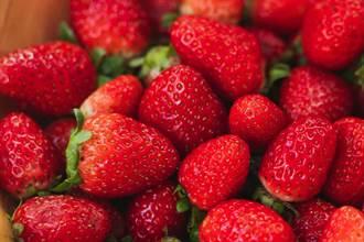 草莓族輸慘了 55歲以上的職場世代是?答案超爆笑