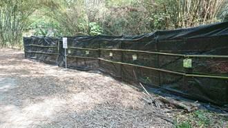 守護六甲區八色鳥棲地 嘉義林管處設隔離觀鳥網