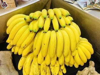 台蕉外銷藥檢不合格 農委會:加強供果園抽驗