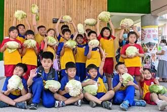 北玄宮蘭花展推廣食農教育 2000顆有機高麗菜送學生