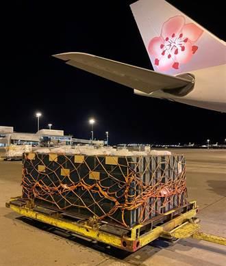 華航首度承運「最迷你的嬌客」 空運蜜蜂由南半球至北半球