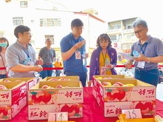 太平紅鈴水蜜桃 甜度12不輸高山貨