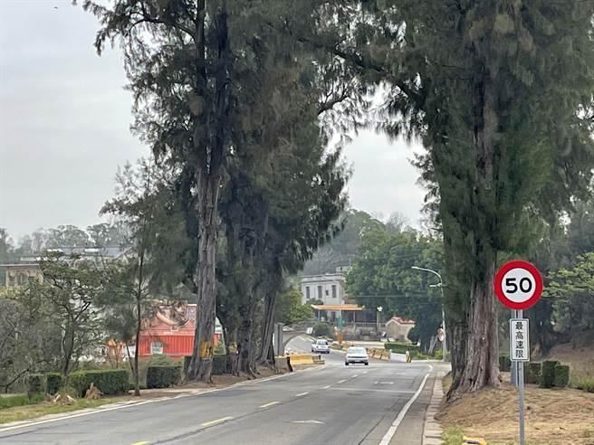 金寧鄉環島北路2段后盤山路段自本月17日起,行車最高速限由時速60公里調降為50公里。(縣府觀光處提供)