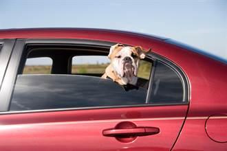 汽車後座三角窗超雞肋?內行吐2關鍵:不便宜