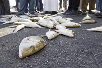 天空出現會飛的魚撞擋風玻璃 駕駛回放影片見真相笑翻