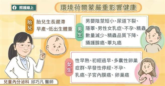 環境荷爾蒙對健康的影響。(圖/照護線上提供)