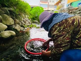 關山水井仔地下水豐沛 水源終年不斷