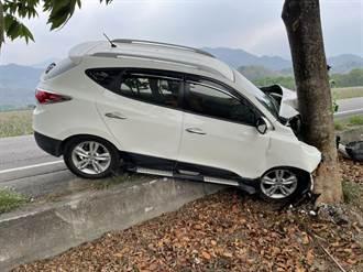 屏东1家5口出游 疑为闪避小狗自撞 73岁驾驶伤重身亡