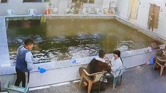 影》規模6.2地震瞬間 釣蝦池變波浪池 魚缸猛搖噴出水花