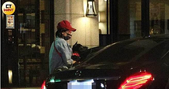 米可白抱著「弟弟」坐上前夫謝銘杰的專車,前往林森北路與友人聚餐。(圖/本刊攝影組)