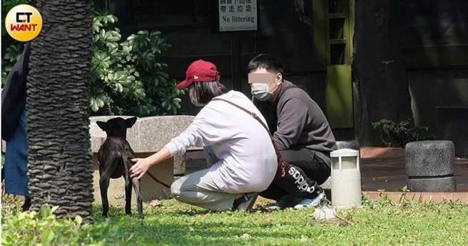 隔天中午,米可白帶著弟弟到公園,將牠交付給新主人。(圖/本刊攝影組)