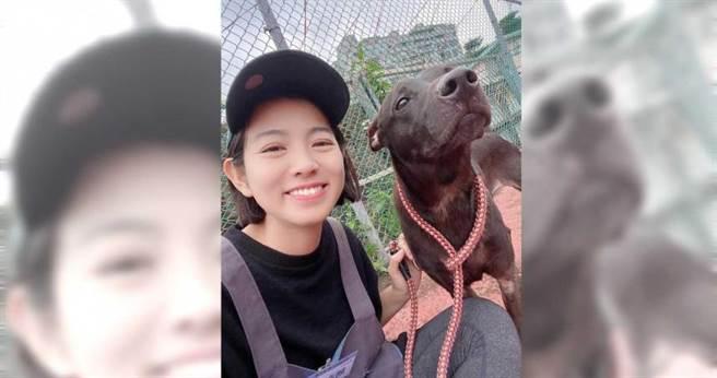 米可白很關心流浪狗,除了自己收養或擔任中途,也常抽空做志工。(圖/翻攝自米可白臉書)