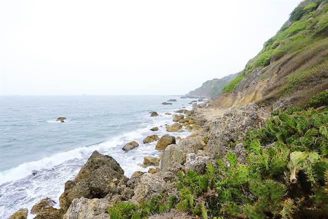 西子灣海岸線的自然風光迷人。(攝影/Carter)