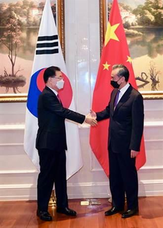 王毅:區域組織行動要防干涉內政  不能武力威脅