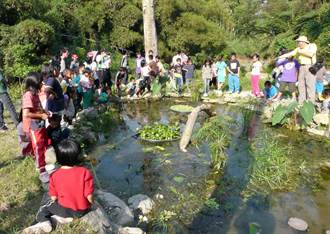 台東10社區申請環保補助 獲全壘打
