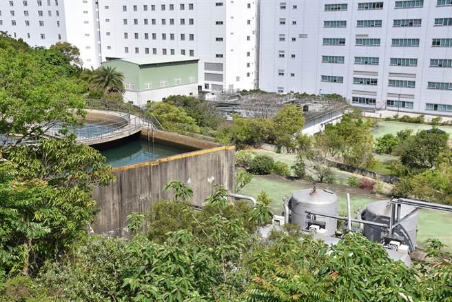 竹南廣源科技園區淨水廠綠化非常徹底,彷彿是座水果公園。(謝明俊攝)