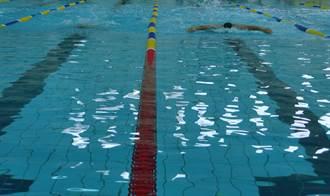 台南抗旱游泳選手無處練 體育處媒合4公立游泳池集中訓練