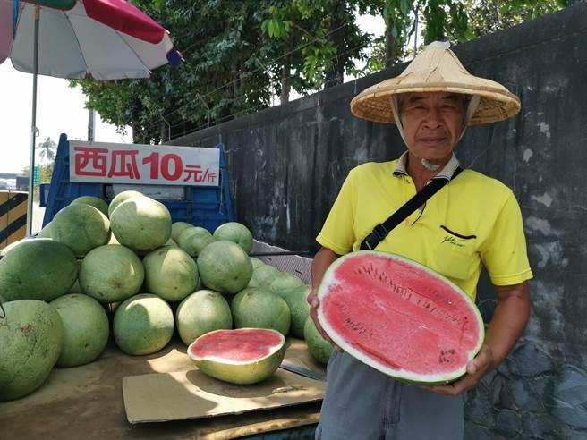 善化瓜農胡國興長年於瓜田附近路旁擺攤,以1斤10元產地價回饋給消費者。(劉秀芬攝)