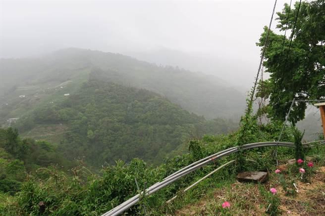 梨山地區一早天氣轉陰,上午先下10分鐘毛毛雨,下午下了半小時嘩啦大雨。(羅進玉提供/王文吉台中傳真)