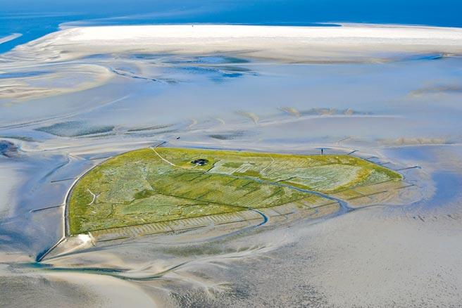 ORIS護育世上最大潮間帶Dat Watt,當地生態豐富。(ORIS提供)