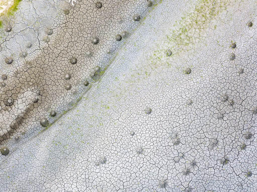 澄清湖乾成大草元,地面出现许多小坑洞,像是迷你版的陨石坑,给人一种来到异世界的感觉。(图/麦特小虫提供)