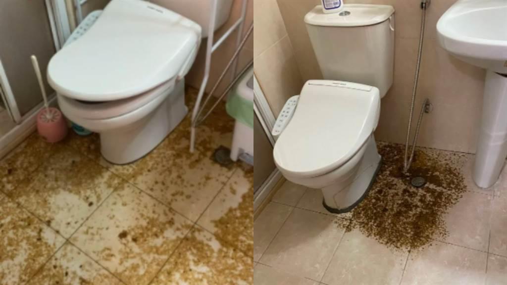 15年老屋的老廁所半夜炸屎尿,讓屋主苦不堪言。(摘自《Dcard》)