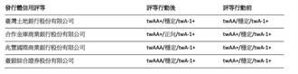 公股金融機構信用評等 跟進台灣主權評等