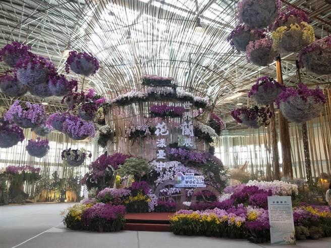 世界蘭花會議暨展覽23日盛大開幕, 24日起將全面線上開展供民眾觀賞。(陳淑娥攝)
