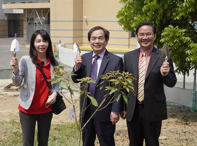 勤益科技大學響應「校園國寶樹PLANT for TAIWAN」活動,在校內栽種金新木薑子與台灣牛樟樹。(勤益科大提供/林欣儀台中傳真)