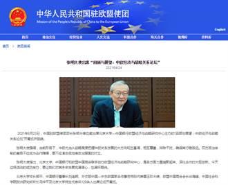 陸駐歐盟使團大使:中歐政治體制差異不應成為合作障礙