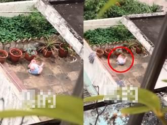 驚見嬰兒獨自躺頂樓地板爆哭 直擊鄰居暴怒:父親在別處澆花