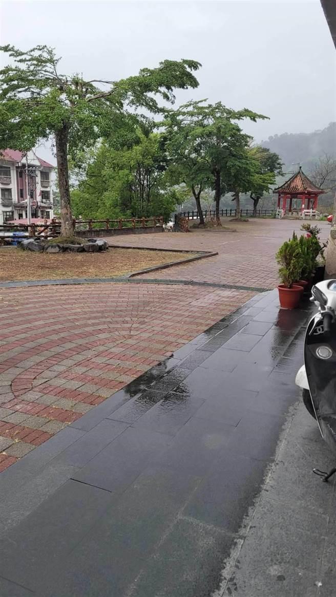 高雄市桃源区降下大雨,居民期盼雨势供给水分,让农产品可以成长更好。(林雅惠摄)
