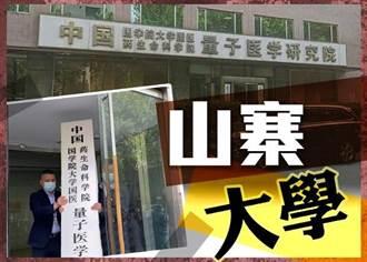 陸「山寨大學」遭拆牌 涉偽造文件