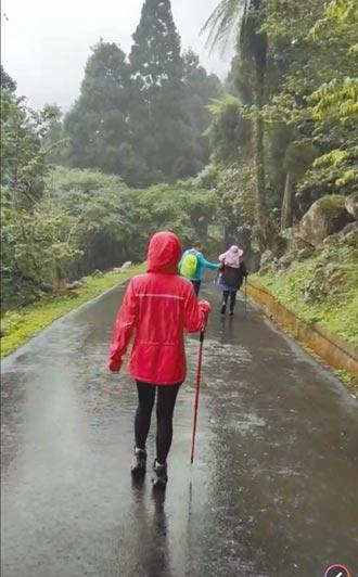 南投溪頭午後降雨 遊客淋溼喊再大點