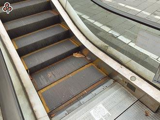 北捷增電扶梯 7成5在台北挨批不公