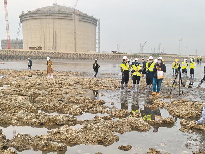 環團見總統還是救不了藻礁 傳政院擬三接外推1公里    潘忠政: 對不起下一代