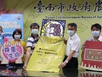 台南每天5隻路殺犬貓 市府推動人道處理讓毛小孩善終