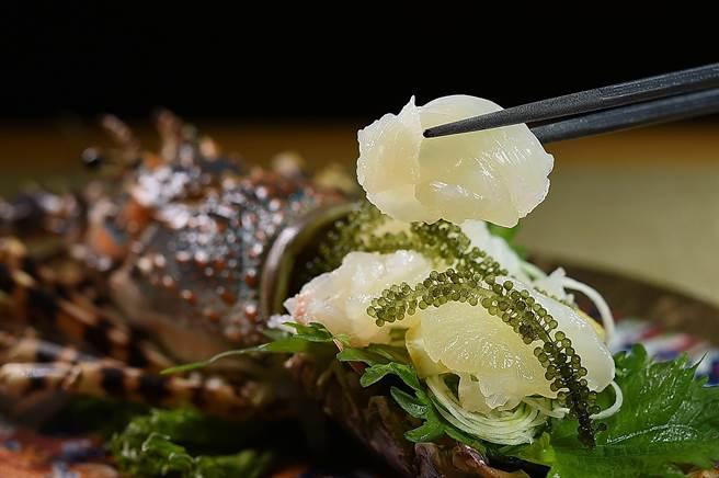 澳洲錦繡龍蝦的體大肉多,刺身的肉質鮮甜滑嫩,搭配帶有鹹味的「海葡萄」更能品嘗出細緻甜味。(圖/姚舜)