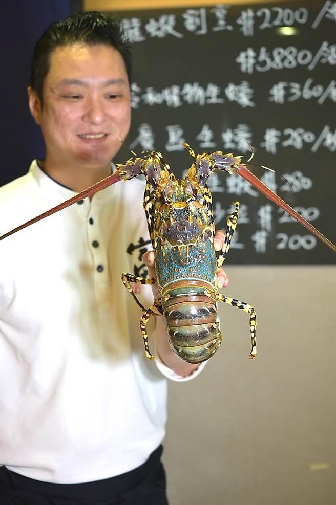 〈富.四季割烹〉料理長王祥富表示,店內引進的澳洲錦繡龍蝦每隻重量1.2公斤至1.5公斤,如此才能供兩人「4吃」。(圖/姚舜)