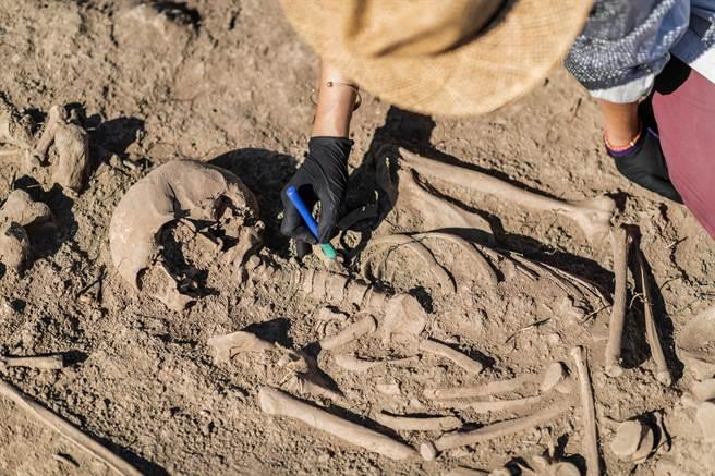 英國建築工在後花園修築露台時,居然從土裡挖出5具人類遺骸。(示意圖/達志影像)