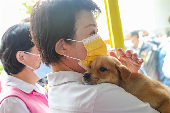 台中市長盧秀燕自己也有養狗,毛小孩安心的趴在盧秀燕肩上。(盧金足攝)