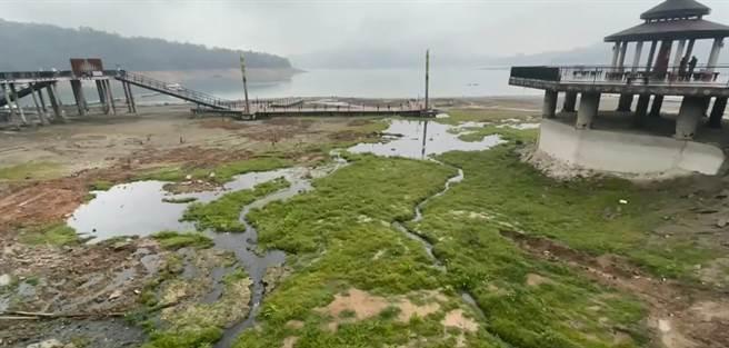 日月潭27日下午又下雨了!潭底荒野大草原竟出現積水。南投縣魚池鄉累計下午2點至3點,1小時的累積雨量達9.5毫米,日累積雨量排全國第2。(翻攝畫面/民眾提供)